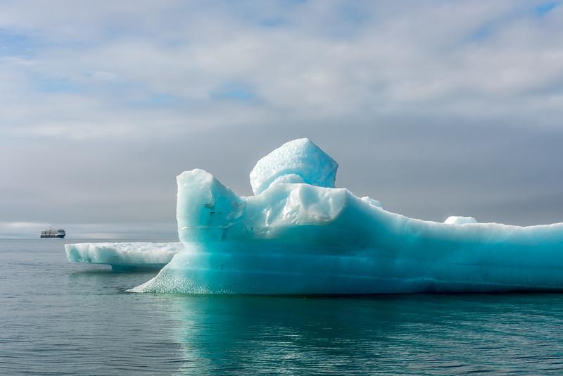 Iceberg & Cruise Ship