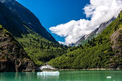 Mountain Streams & Ice