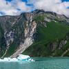 Iceberg Skiff