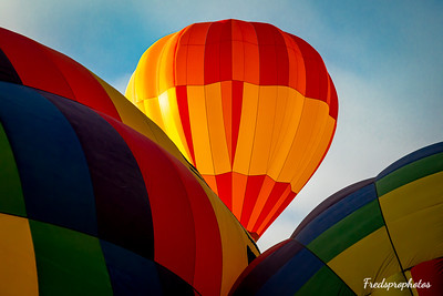 balloons at Festival - -33