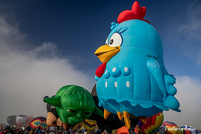 balloons at Festival - -51