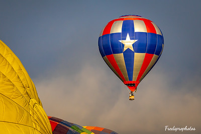 balloons at Festival - -28