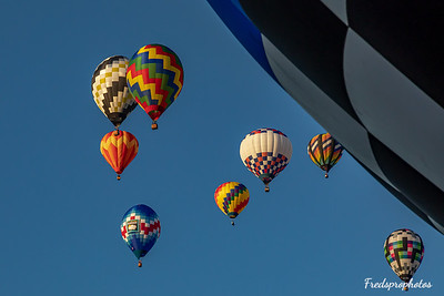 balloons at Festival - -95
