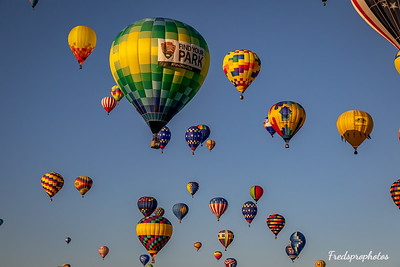 balloons at Festival - -112