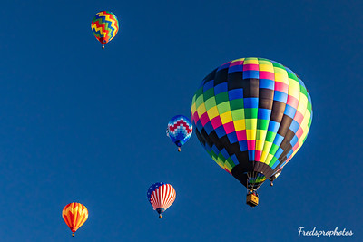 balloons at Festival - -114