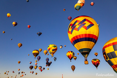 balloons at Festival - -106
