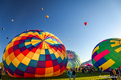 balloons at Festival - -168