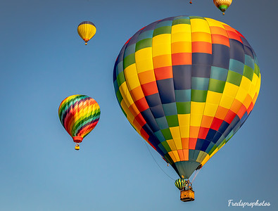 balloons at Festival - -138