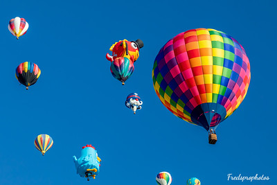 balloons at Festival - -177