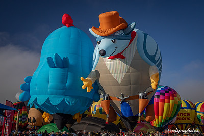 balloons at Festival - -56