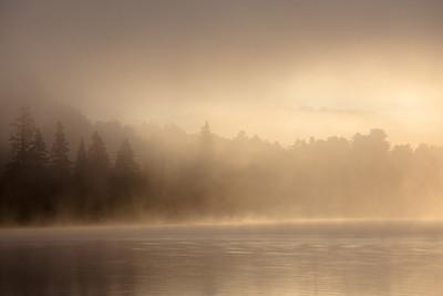 Gold Mist