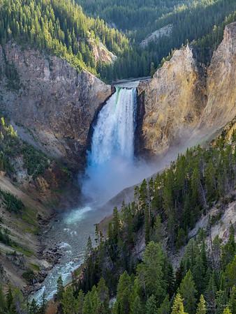 Yellowstone Majesty