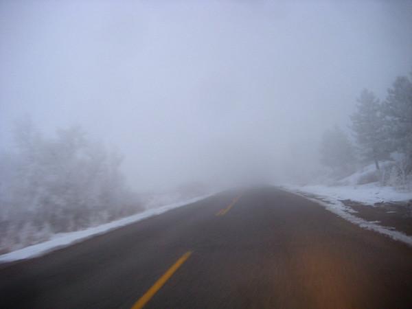 Cold Fog Morning