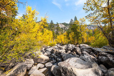 Autumn scenery from the West Fork Carson River