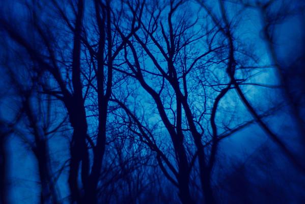 (My Kind Of) Twilight