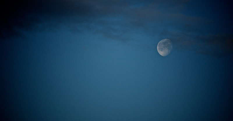 Morning Moon