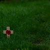 """The Grave - """"Lest we forget"""" - see description"""