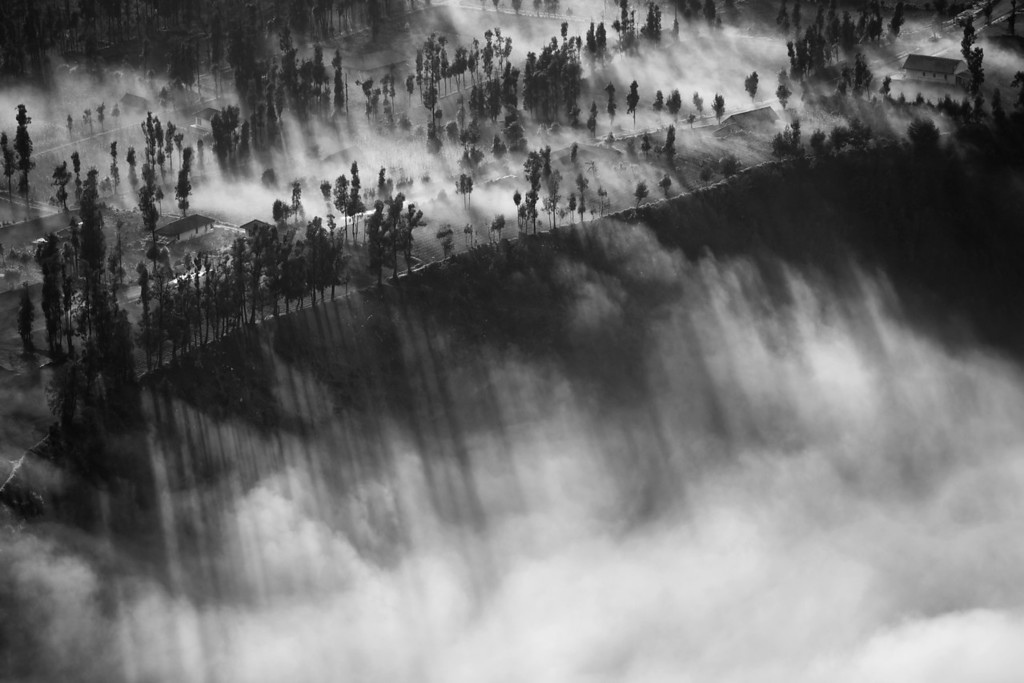 Photograph: The Waterfall of Light - Rays of sunlight burst through some trees into the cloud-filled caldera of Bromo Tengger Semeru National Park (Mount Bromo) in Indonesia.