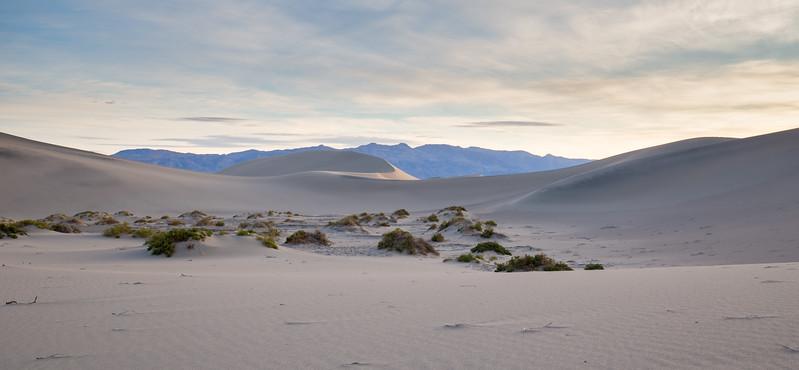 Mesquite Fat Sand Dunes I