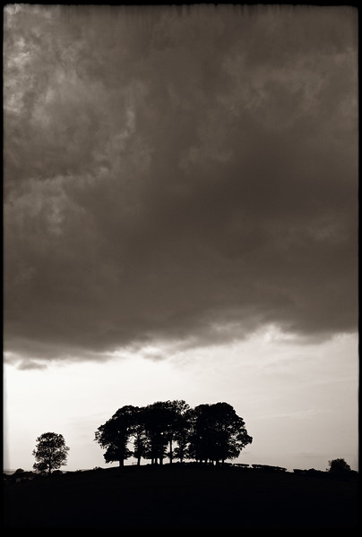 STORM BREWING OVER APPLEBY