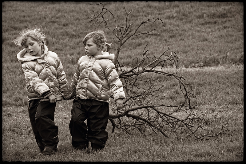 SISTERS FETCHING WOOD