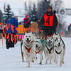 American Dog Derby: Ashton, Idaho
