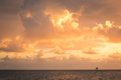 Brilliance on Biscayne Bay