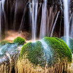 Water Over Moss