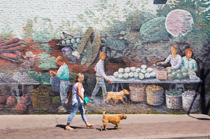 Lady walking Dog outside Wall Art