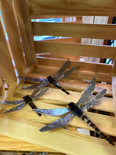 Dragonflies, Assorted Sizes