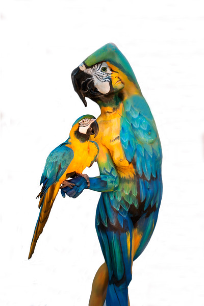 Animals Johannes Stotter Fine Art Bodypainting Gallery And Prints