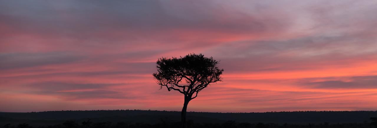 Sunset on the Maasai Mara