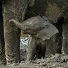 Mud bath with mom