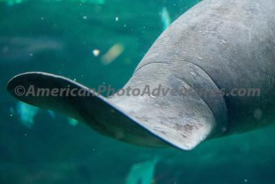 Columbus Zoo_0466