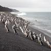 Baily Head, Deception Island, Antarctica