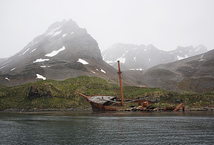 Prince Olaf Whaling Station.