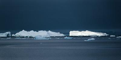 Iceberg Procession