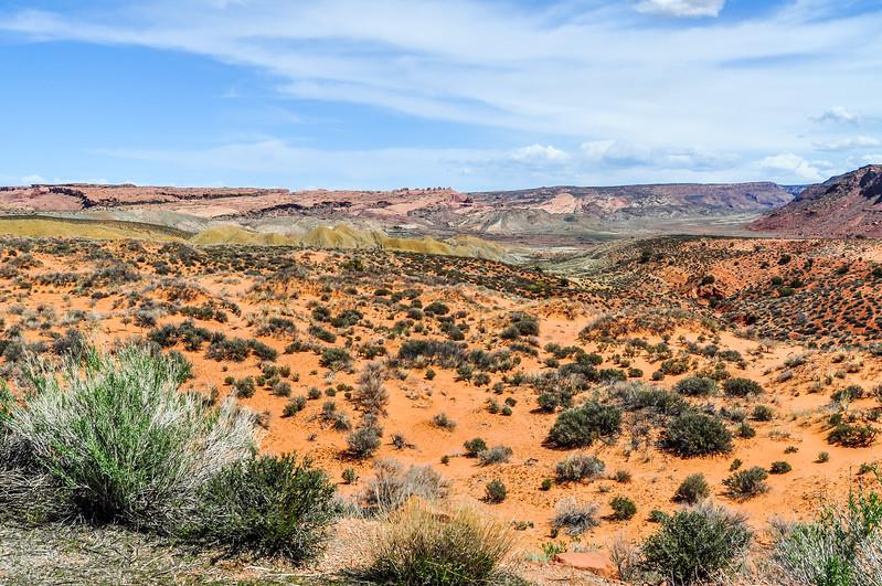 Colorful Desert Vista