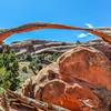 Landscape Arch & Boulder