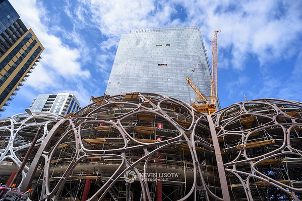 Amazon Spheres Under Construction