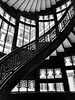 """Rookery Windows"""