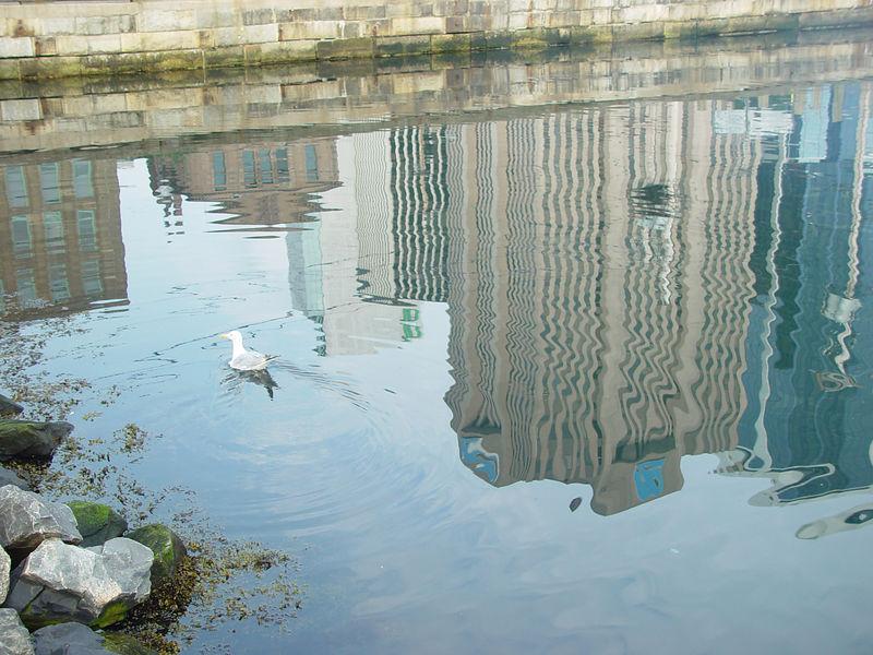 Halifax Skyline Reflection