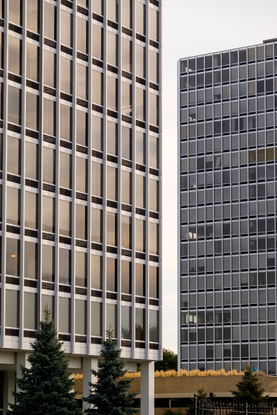 Mies in Detroit and New York