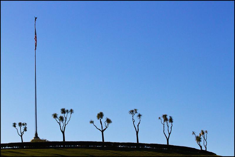 <center><i>Golden Gate National Cemetery (worshiping the flag) </i>, #4522-7D</center>