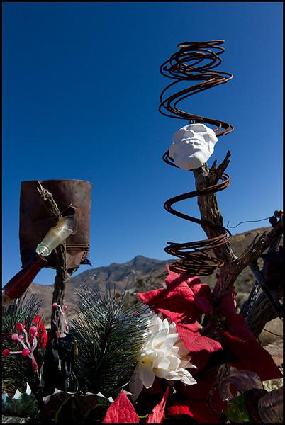 <center><i>Christmas Skull, Chloride, Arizona</i>, #4666-7D</center>