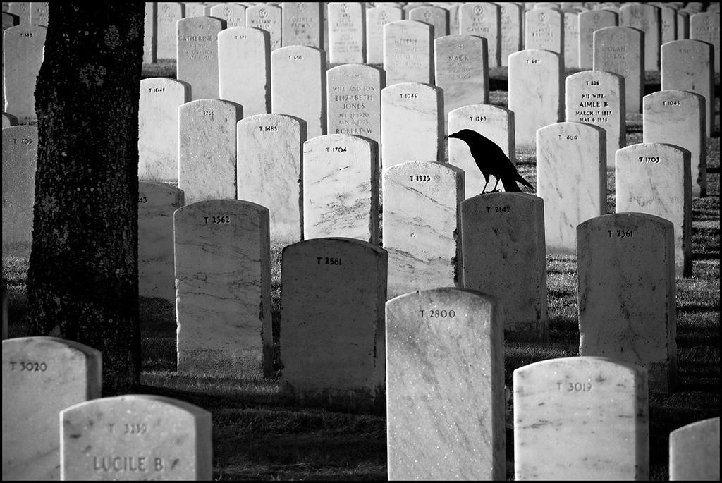 <center><i>Golden Gate National Cemetery (His Wife) </i>, #4637-7D</center>