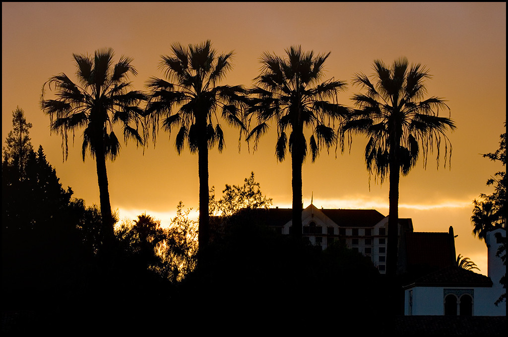 <center><i>Campus Sunset</i>, #2614</center>