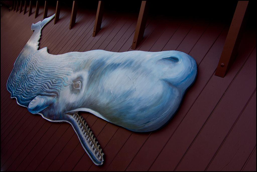 <center><i>Wall Whale</i></center>#6977-7D