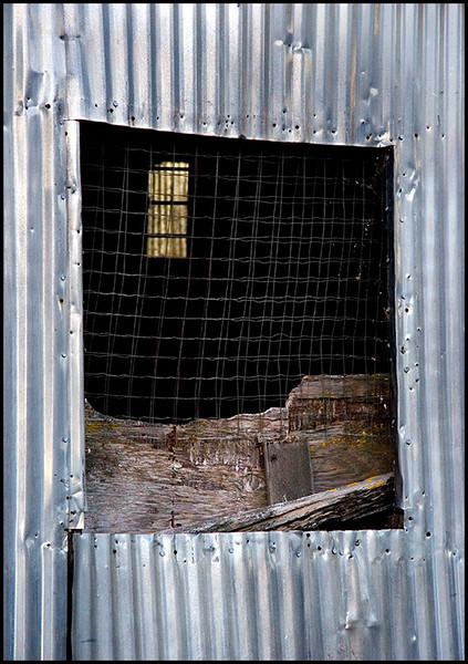 <center><i>Portal Enmeshments</i>, #1688</center>