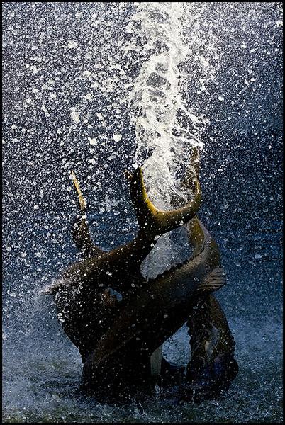<center><i>Fountain</i>, #0561-7D</center>